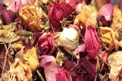 Dried-Potpourri-Cones